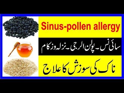 Sinus Problem||Pollen Allergy||Nazla Zukam ka ILaj Urdu/Hindi||Sinus ka Asan Ilaj