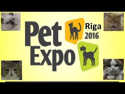 PetExpo 2016 Riga international pets and zoo industry exhibition