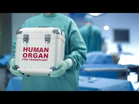 Organ donation in China 100% voluntary
