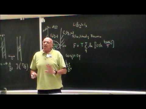 Fundamental Forces II - Fyl Pincus