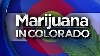 Marijuana Legalized in Colorado!