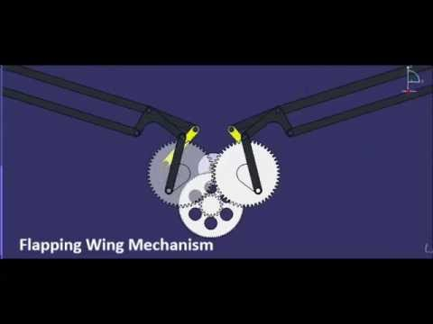 Flapping Wing Mechanism Design Wing Plunge Pitch And