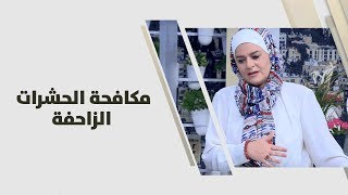 سميرة الكيلاني - مكافحة الحشرات الزاحفة