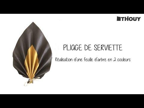 Pliage de serviette : feuille d\'arbre en 2 couleurs - YouTube