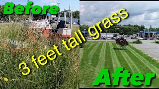 Mowing Tall Thick Grass Ventrac 4500 Tough Cut