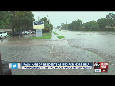 Palm Harbor Residents Asking For More Help