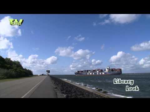 Port of Rotterdam: Yangtzehaven Containerships