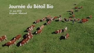 Journée du Bétail Bio 2018 : trailer en version française