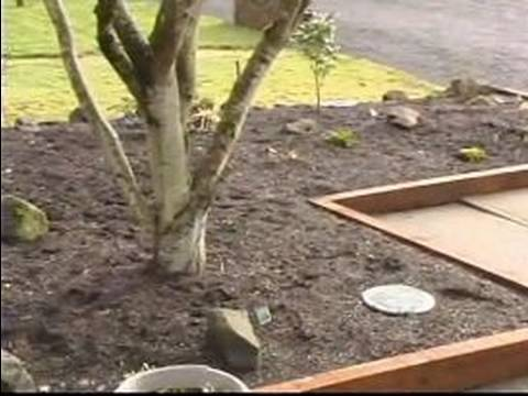 how to pick garden decorations how to make front yard gardens