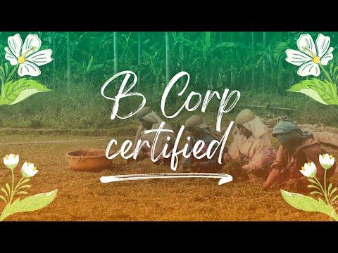 B Corp Certified | Pukka Herbs