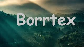 Borrtex: Best Collection. Ambient Mix