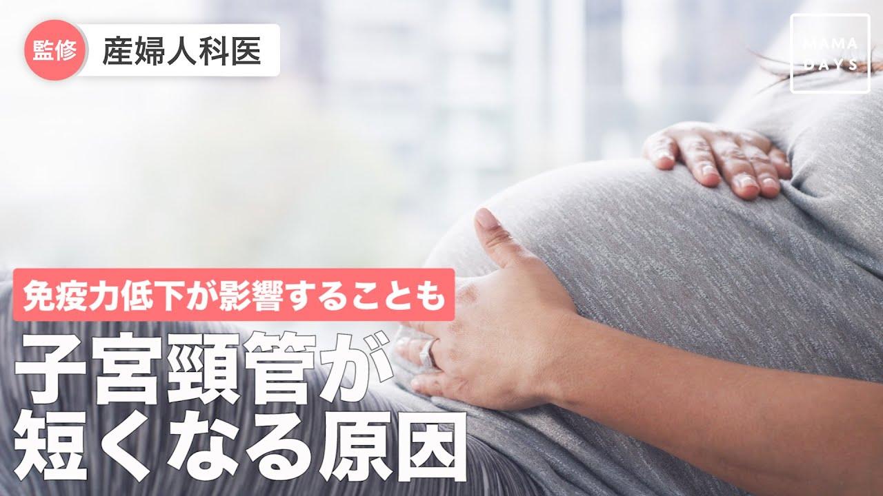 頸管 原因 子宮 短い