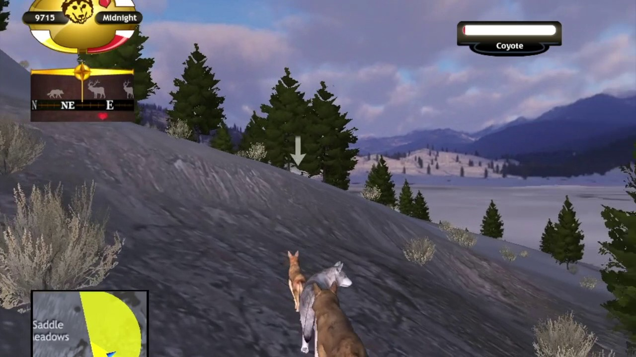 Wolf quest how to make a pack 25 youtube wolf quest how to make a pack 25 ccuart Choice Image