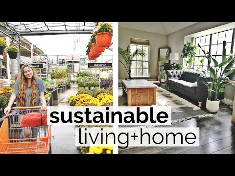 DITL: Sustainable Living ♻️🌎🌿 Eco-Friendly Home Improvement (beyond zero waste)