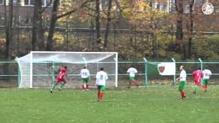 Reinickendorfer Füchse - TSV Rudow (Berlin-Liga) - Spielbericht | SPREEKICK.TV