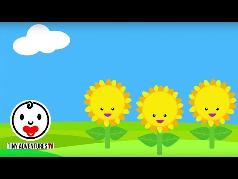 Baby Sensory - Colour Animation (Infant Visual Stimulation)