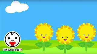 Baby Sensory - Sunflower - High Contrast Color Animation - Infant Visual Stimulation #3
