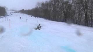 平成26年2月19日開催 第87回全日本学生スキー選手権大会 男子1部...