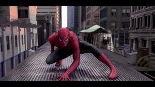 Spider - Man Skillet