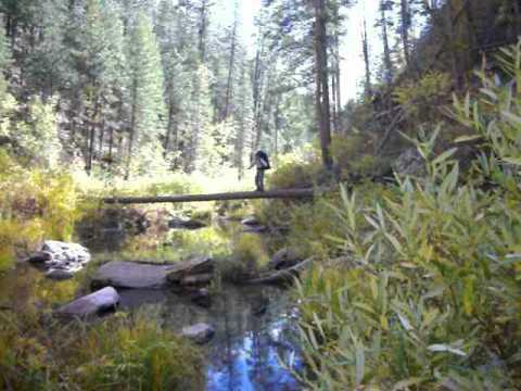 Happy Jack Arizona Map.Maxwell Trail No 37 Hike And Swim Near Happy Jack Arizona Free