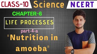 """Nutrition in amoeba 