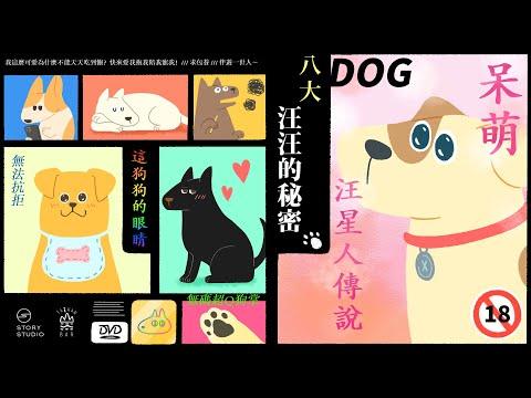 八大狗狗的秘密♥貼心高清|臺灣吧TaiwanBar