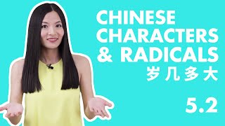 Lesson 5.2 Chinese Characters: 岁 几 多 大 | Basic Chinese Course- ChineseFor.Us