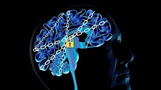 成癮的科學──受毒品影響的大腦《國家地理》雜誌