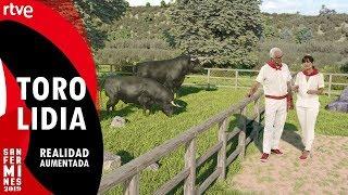 ¿Cómo se cría el toro de lidia? (Realidad aumentada) | San Fermín 2019