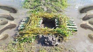 10 bamboo deep hole fish trap two smart boys make deep hole fish trap to catch fishes with bamboo