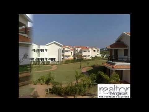 Villa's for Rent in White filed Bangalore Mr. Ali +91 9036036010