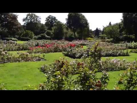 Rosarium Den Haag a Tourist Guide Holland Tour
