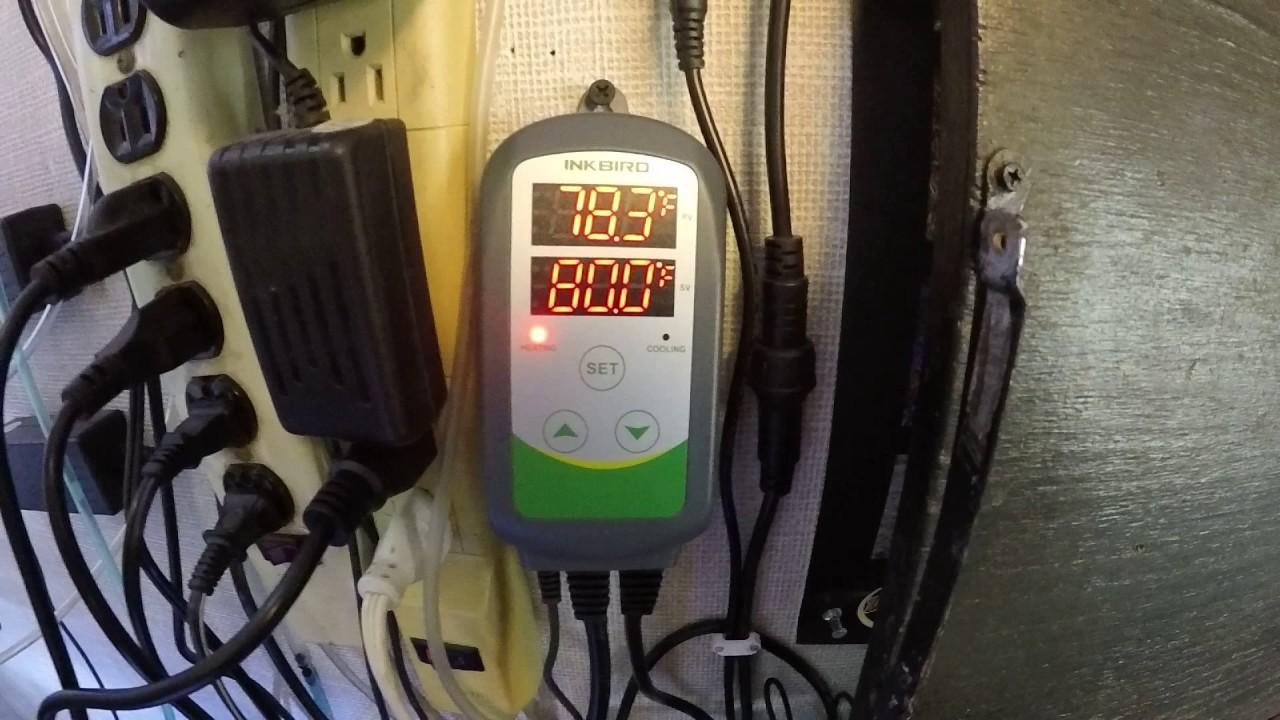Inkbird ITC-308 Aquarium Temperature Controller Review