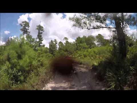 Swamp Ghost 8-3-14