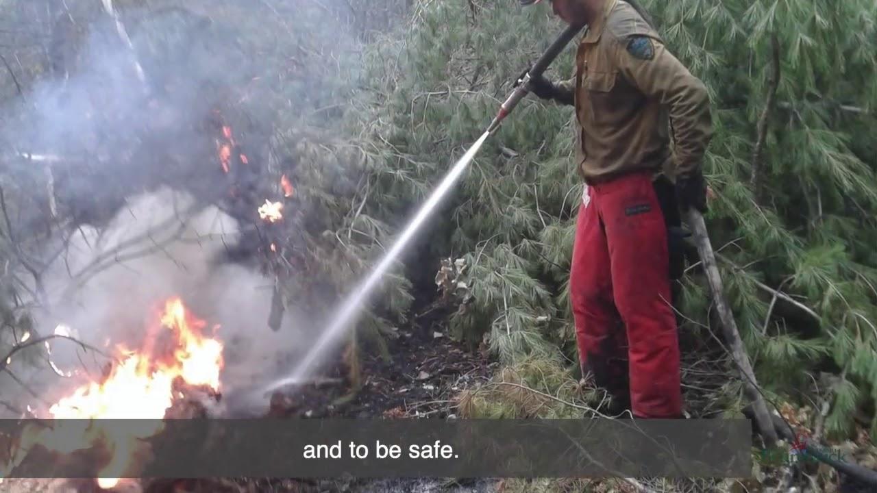 Forest fire awareness