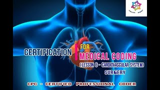 #CPC #Certification #Training #Cardiovascular #system | #30000 series | by PPMP Creative System