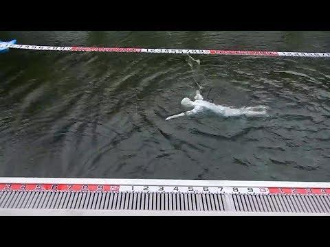 إنسان آلي قادر على السباحة - 4Tech