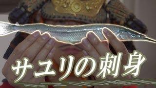 男の出刃包丁!サヨリとの出会いを果たしたオレは|Hemiramphus sajori thumbnail