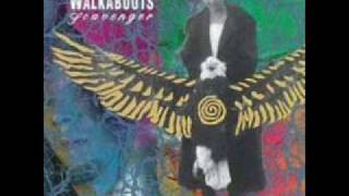 Watch Walkabouts Train To Mercy video