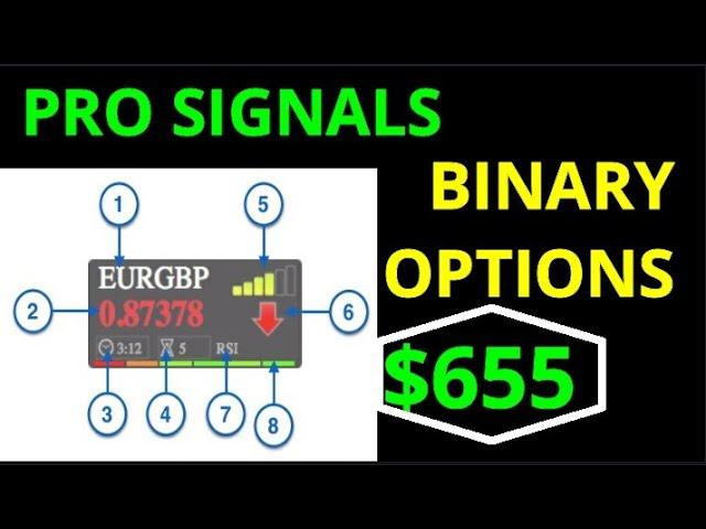 Binary options daily forecast san juan bettingen wertheim hotels in vegas