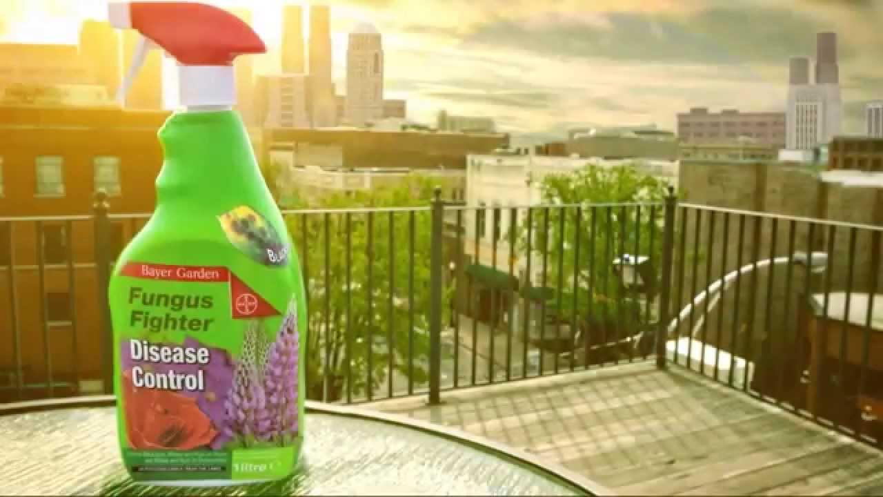 Bayer Garden Ready To Use Sprays