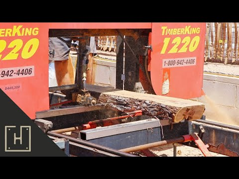 LOGS INTO LUMBER | Milling Mesquite Logs On A Bandsaw Mill
