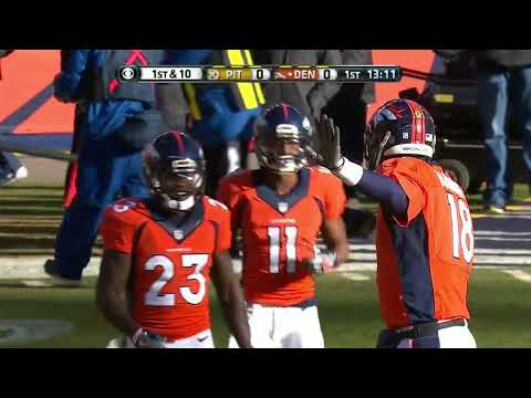 2015 Divisional Round Steelers @ Broncos