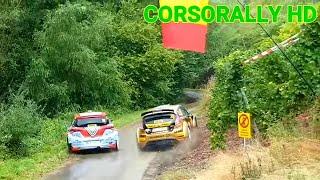 WRC Adac Rally Deutschland 2018 Show and Mistake