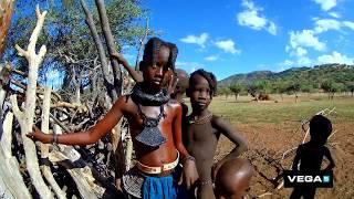 Afrika s Niceboy VEGA 5