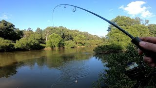 Catching Summer Trout - Fishing in Pennsylvania 2019 - Brook Brown Rainbow