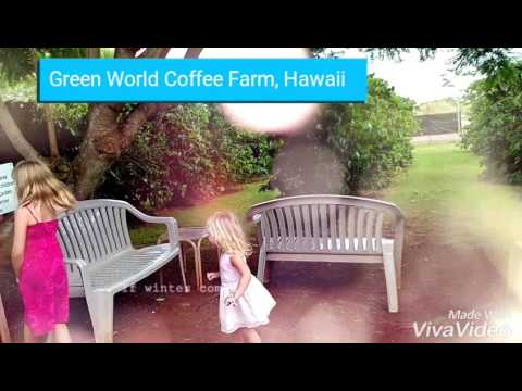 Green World Coffee Farm Hawaii Youtube