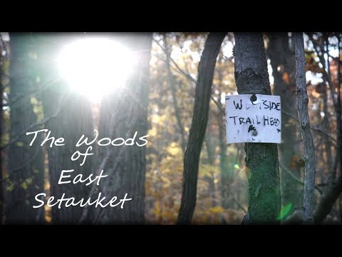 The Woods of East Setauket - My Home Trail
