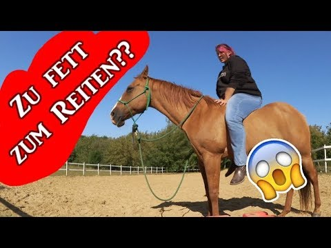 Reitergewicht Zu Schwer Für Mein Pferd Serenity Talk