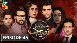 Soya Mera Naseeb Episode #45 HUM TV 9 August 2019